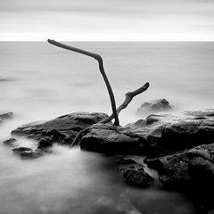 merry xmas (Nate Parker Photography) Tags: ocean xmas longexposure blackandwhite bw seascape monochrome rocks thankyou maine le merrychristmas mountdesertisland merryxmas acadianationalpark haveaniceday