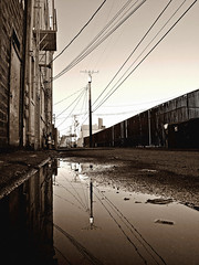 Alleyway reflection () Tags: old city urban usa reflection water pool monochrome rain sepia architecture america grit photo washington nice alley state pacific northwest image district south united picture scene gritty historic neighborhood photograph alleyway local tacoma states tone
