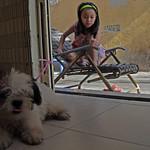 Saigon. La fillette et le chien