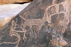 DSC9584 (Jebel Elba) Tags: egypt prehistoric petroglyph rockart easterndesert nubiandesert redseahills elbanationalpark jebelelba gebelelba جبلعلبة محميةجبلعلبة المحمياتالطبيعيةفىمصر