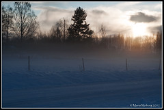 Fog against the sun (mmoborg) Tags: winter snow cold kyla vinter sweden sverige snö 2012 mmoborg mariamoborg