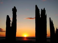 Setting sun seen through remains of timber groynes - Minnis Bay, Birchington (pjw58) Tags: sunset sea sun beach bay kent groyne birchington minnis