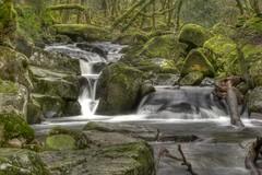 River Meavy at Dewerstone (jedlangdon) Tags: longexposure water river waterfall nikon plymouth devon slowshutter dartmoor hdr dewerstone flickrhivemind nikond3100