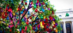 Money Tree (jp3g) Tags: china london chinesenewyear panasonic bags g3 waterdragon moneytree yearofthedragon 1442mm