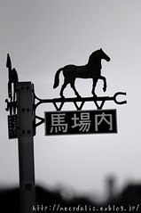 signpost in the race course... (necydalis) Tags: bw horse white monochrome animal silhouette japan race mammal japanese tokyo back nikon corse signpost nikkor afs guidepost equus x17 vrii 30028g d300s
