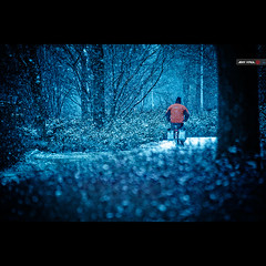 The Mailman Always Delivers (Jeff Krol) Tags: street blue winter white snow cold bicycle canon snowflakes eos post mail bokeh magic freezing tnt snowfall flakes cinematic hoogeveen f28 mailman postman 70200mm 70200l ef70200mmf28lusm 60d canon60d jeffkrol