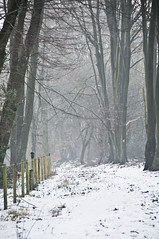Snowy Walk (zach.stone) Tags: uk winter england snow walking britain buckinghamshire dunsmore chiltens