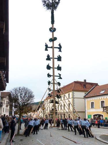 Tradition Maibaumstellen in Lam 06 (160501 - Böhmerwald / Bayerischer Wald - Germany)