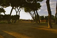 giardino degli aranci (sz1507) Tags: trees rome roma alberi tramonto cupola sanpietro aventino giardinodegliaranci terrazza allaperto parcosavello