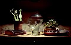(Alex Hoxie) Tags: people glass 35mm artwork artist detroit symbols filmphotography nostrobistinfo removedfromstrobistpool seerule2