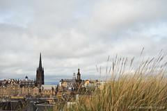 From National Scottish Museum's roof (alǝxH3o) Tags: thehub scotland europe uk edinburgh flickrpublic dsc07497cogwm dsc07497cog watermarked nationalscottishmuseum roof grass cityscape sonya7 sonya7m2 sonya7ii ilce7m2 minoltaaf35105mmf3545 beercan