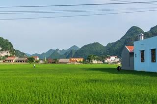 bac son - vietnam 20