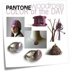 woodrose (branda knits) Tags: jewelry rings owl knits macrame branda woodrose diasyflores