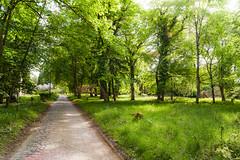 nationalpark (Philipp Kr.) Tags: nationalpark vorpommern mecklenburg mritz seenplatte mecklenburgische mritzer langhagen