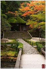Moss-covered temple gate, Kyoto (Damien Douxchamps) Tags: bridge japan stairs temple japanesegarden moss pond kyoto autumncolours fallfoliage momiji   mapletree thatchedroof   rockgarden kansai japon    kinki    hounenin honenin     karesansui     drylandscapegarden  southernsakyo usedbamboo