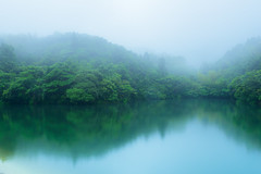 Foggy reflection (kurumaebi) Tags: reflection nature landscape nikon d750 yamaguchi