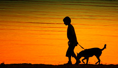 Going home (photon tamer) Tags: friends boy sunset dog silhouette backlight evening availablelight goinghome minolta70210mmf4 silhouetteshot sonydslra700