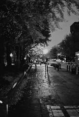 FM2n_Planar50_Yokohama_20111203_33 (Jun Takeuchi) Tags: street bw slr film monochrome japan night zeiss blackwhite nikon cosina streetphotography xp2 日本 yokohama filmcamera kanagawa 夜景 ilford 横浜 fm2 singlelensreflex planar 神奈川 carlzeiss 神奈川県 c41 filmphotography fm2n ilfordxp2super400 nikonfm2n nikonnewfm2 横浜市 planart1450 planar1450 planart50mmf14zf nihonodori planart1450zf