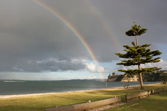 Rainbow at Eastern Beach (Shaun Holmes) Tags: newzealand rainbow auckland easternbeach