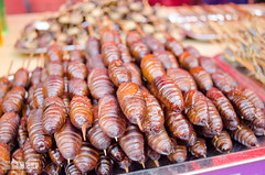 Cocoons (Aragh0rn) Tags: china food yummy chinesefood xiamen exoticfood