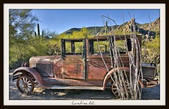 Old & Rusty @ Carefree AZ (Michael D Martin) Tags: old arizona cactus abandoned phoenix rusty holes forgotten bullet crusty gravel bulletholes