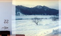 (Marc Liu/馬克/) Tags: snow film japan flash 110 日本 雪 秋田県 角館 superheadz ikimono marcism