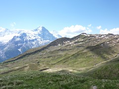 On the trail again - back to First (Purple Plectrum) Tags: grindelwald bachalpsee