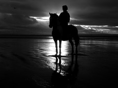 Horse on Beach Formby Point (frazerweb) Tags: