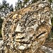Stone Face1