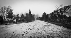 first steps on 2012 (thearchaic) Tags: bw snow brno czechrepublic