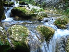 Rio Purón-Puron River Valderejo Nature