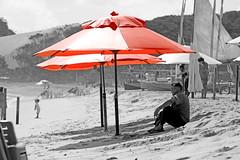 Descansando  sombra e com uma bela vista para o mar (Micael Duarte) Tags: bridge family vacation bw macro praia beach familia natal kids night zoo fly timelapse cobra child barcos coconut pb drop 100mm ponte noite criana lagoa splash mosca ferias 1022 genipabu aquario rn jacar cantodomangue pontenewtonnavarro
