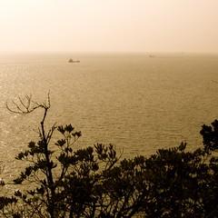 From Mushima Lighthouse (kamoda) Tags: sea lighthouse japan islands inland okayama 2012  setonaikai   kasaoka  mushima