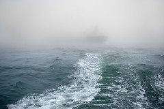 Fog At Sea