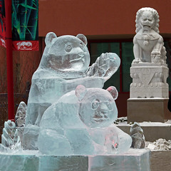 Ice Sculpture----Panda Bears (njchow82) Tags: winter cold calgary frozen downtown chinesenewyear alberta oriental icesculpture chineseculture iceart pandabears chineseculturalcentre beautifulexpression beautyunnoticed panasonicdmcfz35 nancychow artistsfromheilongjiangchina 2012istheyearofthedragon foodogsculpture