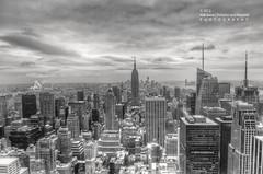 NYC Skyline View -