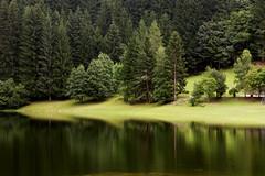 Serràia lake - Trento - IT (Marco Peratello) Tags: nature lake eos300d trees reflection lago serraia green marco peratello allaperto calma verde