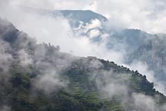Clouds rising from the valleys (Michał Olszewski) Tags: nepal field clouds asia village rice terrace land himalayas paddyfield acap civilengineering gandaki kaski annapurnaconservationarea geographicalfeatures annapurnaconservationareaproject landstructures