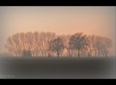 alba ngc aurora nebbia bestofflickr foschia ilikenature... (Photo: KANEKORSO on Flickr)