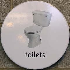 toilets (Leo Reynolds) Tags: sign canon eos 7d squaredcircle f56 iso1000 sqlondon 47mm signinformation hpexif 0017sec xleol30x sqset072 xxx2012xxx
