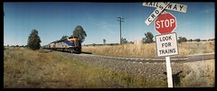 StopLook for Trains (heritagefutures) Tags: panorama chicago color car rural table md crossing diesel matthew top low transport grain rail railway loco australia el shoko class level 400 nsw widelux plus locomotive imaging interstate tandem zorro freight flinders cf s300 fg sct leasing albury gclass livery sclass f7 ferrania panon g535