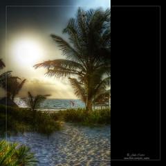 Cuando el termómetro marca otra temperatura (Julio_Castro) Tags: sol mexico mar nikon yucatan playa palmeras arena cancun vacaciones caribe buentiempo nikond700 selvayucatan 26ºenenero