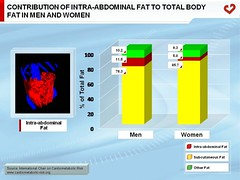 Contribution of intra-abdominal fat to total body fat in men and women (My Healthy Waist) Tags: adiposetissue abdominalobesitybodyfatdistribution