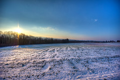 Low Sun over frozen Field (Daniel J. Mueller) Tags: trees sun snow ice field forrest valley hdr tal reuss 7xp umfahrung ottenbach umfahrungsstrasse d3s mygearandme