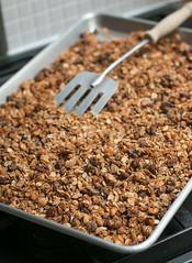 Peanut Butter and Chocolate Chip Granola (David Lebovitz) Tags: recipe chocolate granola peanutbutter chocolatechip muesli chippeanut buttergranolarecipeoatssunflowerseedsdavid buttergranolarecipeoatssunflowers lebovitzmuesli