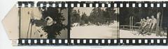 35mm Contact Print Roll In der Heimat 2 (01) (Hans Kerensky) Tags: winter dog film 35mm paper print fun found deutschland with 1938 holes photographs german f roll contact agfa 1939 heimat sprocket skie isopan