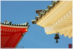 Danjogaran temple roofs in Koya-san, Japan (Damien Douxchamps) Tags: roof japan temple bell under bluesky roofs koyasan   kansai japon   kinki     wakayamaprefecture  danjogaran