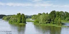 La Loire vu du pont ferroviaire (apprendre-la-photo.weebly.com) Tags: nature paysage fleuve laloire