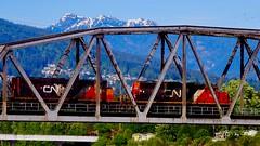 Capilano Bridge (Steve Burgess1) Tags: mountains vancouver train engine westvancouver cnrail