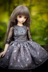 grey owl (koroa) Tags: doll dress sally lolita owl bjd daydream mori msd feeriedoll feeriedollatelier